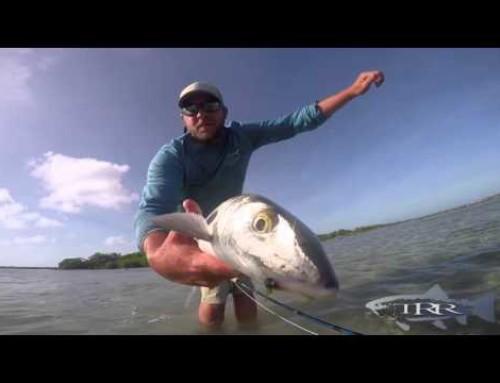 TURNEFFE FLATS FLY FISHING LODGE