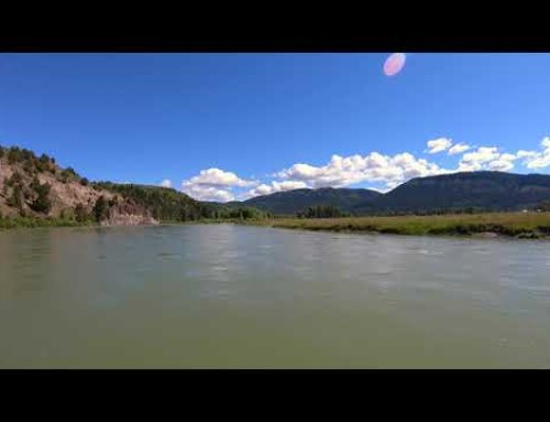 South Fork Snake River Canyon Section – June 2018 – Three Rivers Ranch Fly Shop